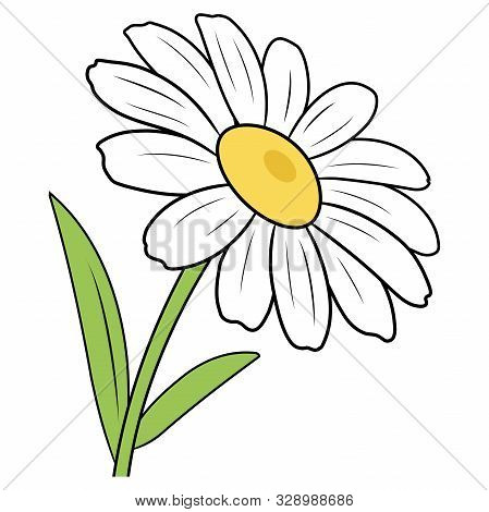 Illustration Of A Cartoon Chamomile On A White Background