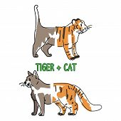 Childish tiger and pet cat animal splice vector illustration. Hand drawn doodle inked wildlife animal creature mixture, trendy feline and kitty monster clipart. poster
