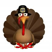 Toon Thanksgiving Turkey Sitting wearing a Pilgrim hat. Isolated. poster