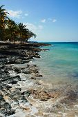 Along the shore near Playa Guardalavaca Cuba poster