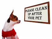 Please Clean Up After Your Pet Dogs Sign poster