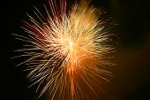 Fireworks explode in the night sky in Florida poster