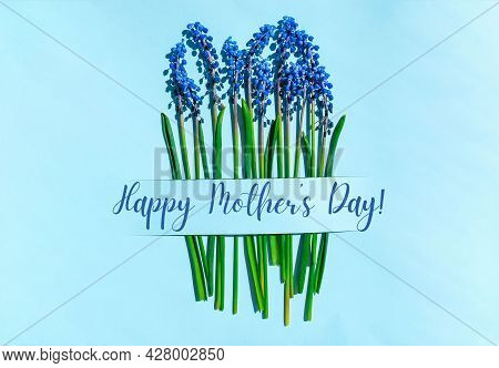 Happy Mothers Day Postcard Layout. Spring Modern Still Life. Blue Muscari Flowers Growing From Recta