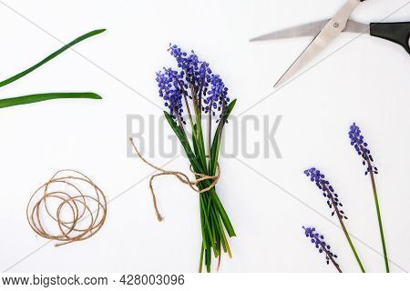 Female Hands Collect Bouquet Of Blue Muscari As A Gift. Local Small Business Pruning Flowers. Floris