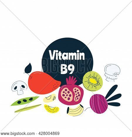 Vitamin B9 Main Food Sources Chicken, Meat, Beans, Broccoli. Vector Illustration In A Hand-drawn Sty