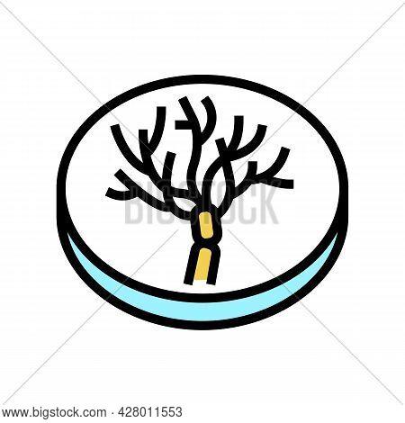 Penicillium Mold Fungi Color Icon Vector. Penicillium Mold Fungi Sign. Isolated Symbol Illustration