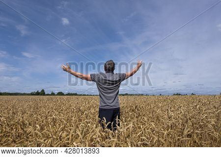 An Adult Man In A Farm Field Among Ripe Cereals And Raised His Arms To The Sides. Harvesting, Early