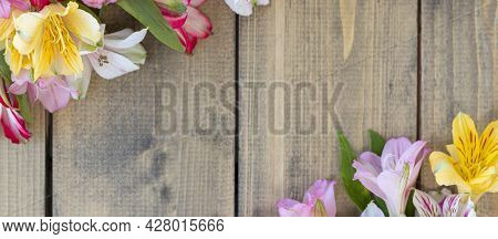 Banner With Background From Multi-colored Flowers With Copy Space. Multicolored Alstroemeria, Pink,