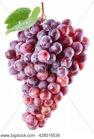 Bunch of pink grapes in water drops with a grape leaf isolated on a white background.