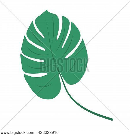 Monstera Deliciosa Leaf, Herbal Element. Can Be Used As An Isolated Sign, Symbol Or Icon. Botanical