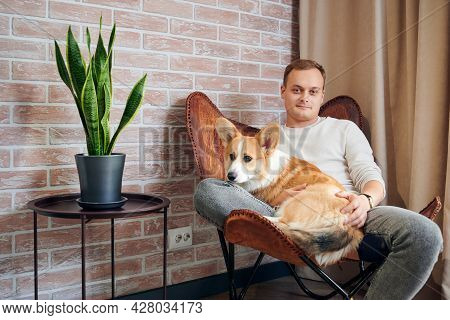 Portrait Of Good-looking Man With Adorable Corgi Sitting On Chair Beside Beautiful Houseplant. Hands