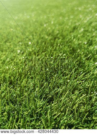 Artificial Green Grass, Green Grass, Grass Background Texture