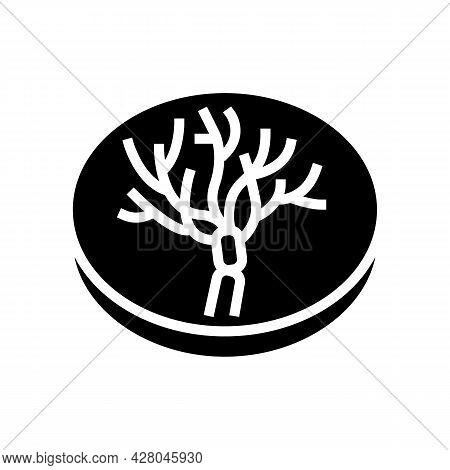 Penicillium Mold Fungi Glyph Icon Vector. Penicillium Mold Fungi Sign. Isolated Contour Symbol Black