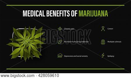 Medical Benefits Of Marijuana, Black Poster With Infographic And Bush Of Cannabis In A Pot. Benefits
