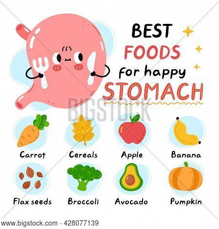 Cute Stomach With Fork And Knife. Best Foods For Happy Healthy Stomach Infographic. Vector Flat Dood