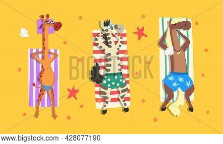 Animals Sunbathing On Beach Set, Top View Of Giraffe, Zebra, Horse Relaxing On Seashore At Summer Ho