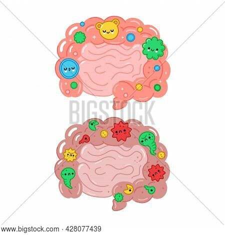 Healthy And Unhealthy Intestine Organ With Good Bacterias, Microflora. Vector Hand Drawn Cartoon Ill