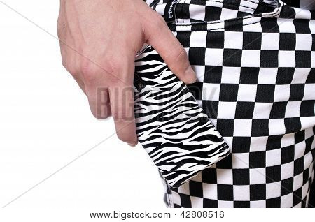 Zebra And Checker Pattern