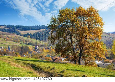 Tree In Fall Foliage On The Hill. Autumnal Rural Scenery On A Sunny Day. Village In The Distant Vall