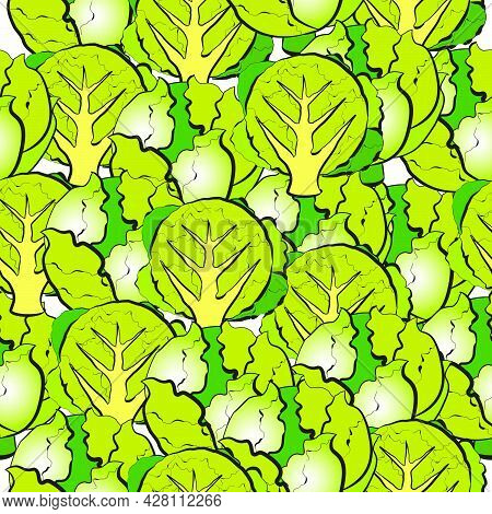 Vector Pattern With An Illustration Of Iceberg Lettuce. Round Head And Rocked In The Section. Seamle