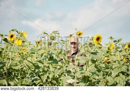 Cheerful senior male farmer in workwear standing in sunflower field in front of camera and using touchpad during work on sunny day