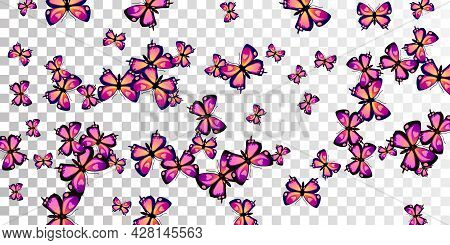 Exotic Purple Butterflies Flying Vector Wallpaper. Summer Vivid Moths. Wild Butterflies Flying Fanta