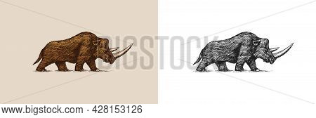 Woolly Rhinoceros. Extinct Animal. Ice Age. Vintage Retro Vector Illustration. Doodle Style. Hand Dr