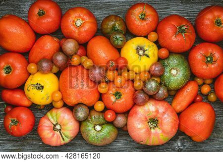 Fresh Heirloom Tomatoes With Water Drops On A Wooden Background.