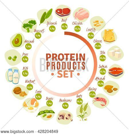 High Protein Products Progressive Circle Diagram With Actual Content Data From Spinach To Beef Flat