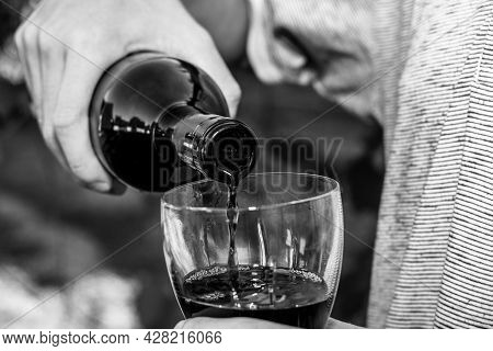 The Winemaker Pours Wine From A Bottle Into A Glass Against The Background Of Grape Bushes Black And