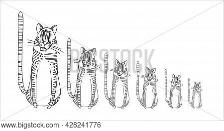 Trendy Year Tiger 2022, Great Design For Any Purposes. Modern Backdrop. Trendy Vector Style. Decorat