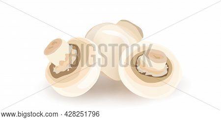 Seamless Pattern Heap Of Fresh Appetizing Champignon Mushrooms Isolated On Transparent. Organic Fung
