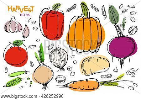 Harvest Festival Set. Vegetarian Healthy Food Vector Illustration. Fresh Organic Delicious Vegan Men