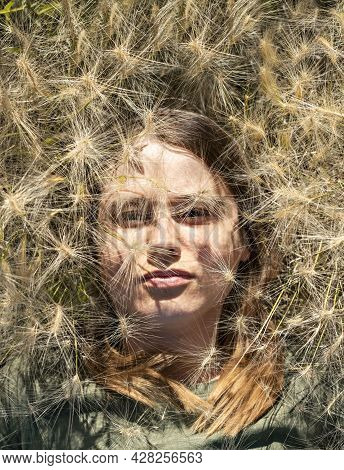 Portrait Of Beautiful Young Blond Woman Lying Among Fluffy Spikelets Of Barley Grass And Flowersin M