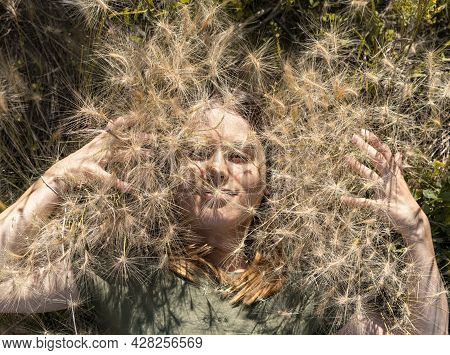 Portrait Of Beautiful Smiling Young Blond Woman Lying Among Fluffy Spikelets Of Barley Grass And Flo