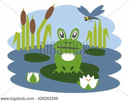 Funny Characters Frog And Dragonfly In Summer.  Vector Simple Image Of A Cartoon Toad Sitting On A W