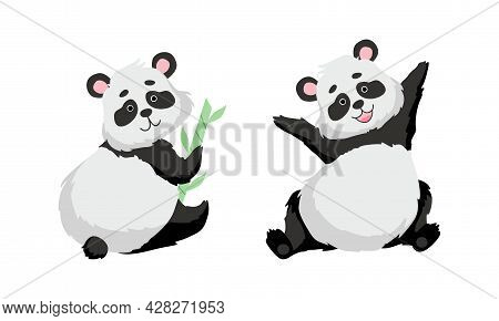 Funny Panda Bear With Black-and-white Coat And Rotund Body Sitting With Bamboo Vector Set