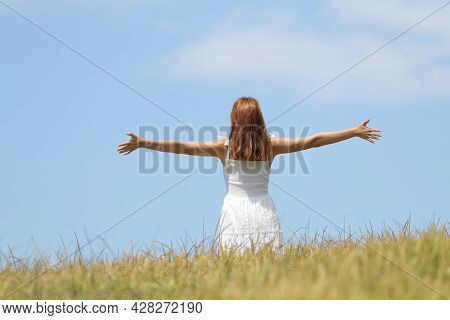 Back View Portrait Of A Happy Woman Celebrating Summer Outstretching Arms In A Wheat Field