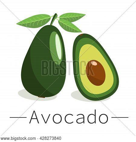 Avocado Vector Icon. Whole Avocado And Avocado In Cut. Exotic Fruits. Avocado Fruit In Flat Design.