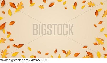 Fall Seasonal Festive Background Frame With Falling Autumn Leaves. Copy Space. Blowing Colorful Oak