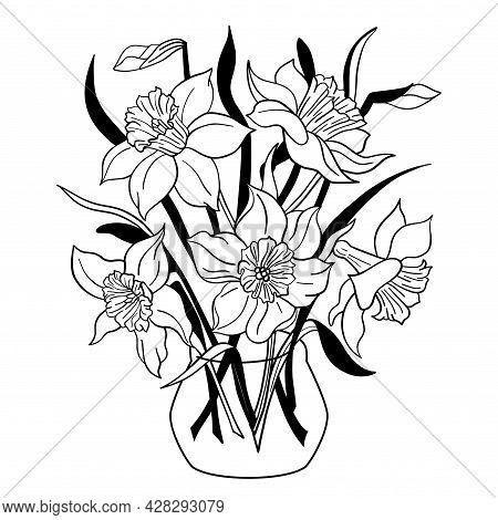 Vase Of Narcissus Flowers. Daffodil Flowerpot. Isolated Spring Bouquet Outline. Black And White Vect