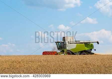 Combine Harvester Harvests Ripe Wheat. Agriculture Concept, Ripe Field With Combine Harvester.
