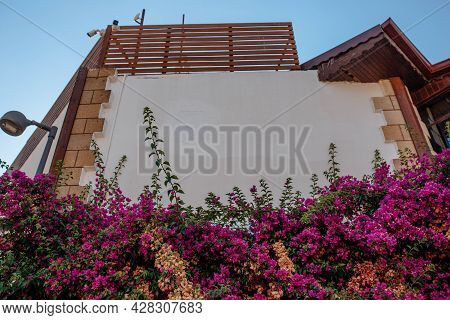 Exterior Of The Buildings. The Facade Of The Modern Building Is Decorated With Fresh Curly Flowers.
