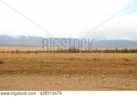 A Row Of Small Bushes In The Autumn Steppe Lying At The Foot Of A Mountain Range With Snow-capped Pe