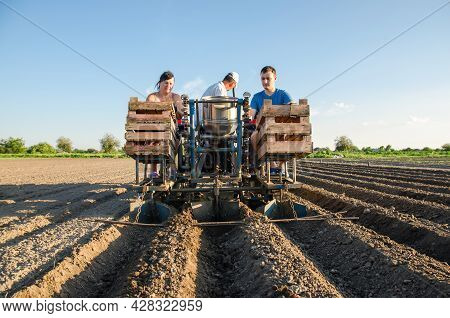 Workers On A Tractor Are Planting Potatoes. Automation Of The Process Of Planting Potato Seeds. High