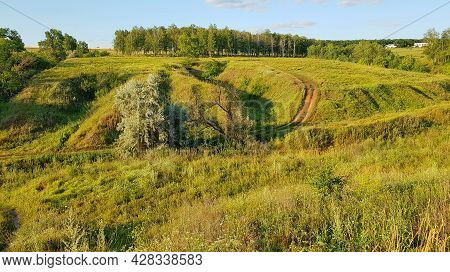 Beautiful Hilly Countryside Meadow With Trees And Grass
