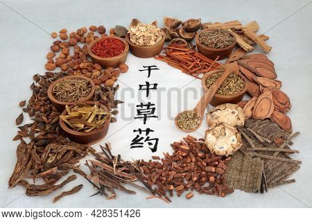 Traditional Chinese herbal plant medicine selection with dried herbs and calligraphy script on rice paper. Health care concept. Translation reads as dried chinese herbs.