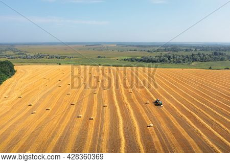 Lots Of Bales Of Straw In A Mowed Field: Tractor Packs Straw In Bales, Aerial Drone Shot. Harvesting