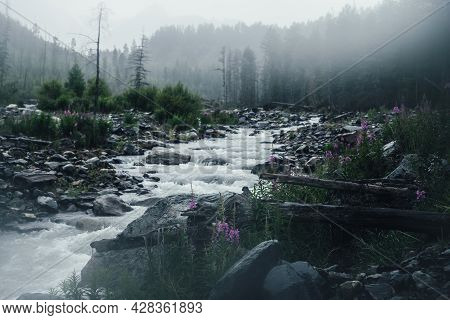 Atmospheric Rainy Landscape With Pink Flowers On Background Of Powerful Mountain River In Heavy Rain