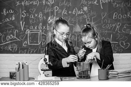 Chemistry Research In Laboratory. Little Girls In School Lab. Teamwork. Biology Lab. Successful Team